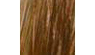 BLASHES Eyebrow Extension light brown